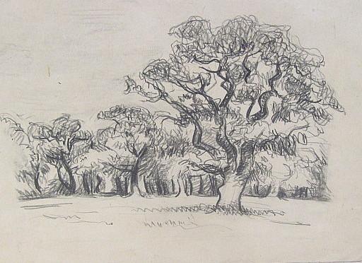 Erich HARTMANN - Disegno Acquarello - Bäume.