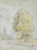 Camille PISSARRO - Disegno Acquarello -  Arbres au bord d'une rivière