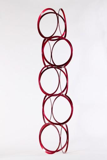 Shayne DARK - Sculpture-Volume - Drawing in Space