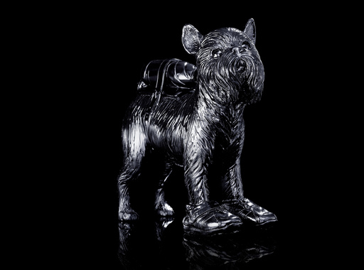 William SWEETLOVE - Sculpture-Volume - Cloned Griffon Bruxellois with pet bottle