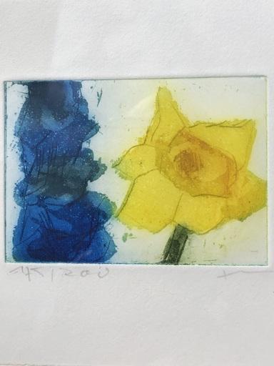 Klaus FUSSMANN - Print-Multiple - Narzisse Rittersporn