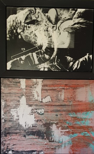 Steve MILLER - Peinture