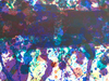 Sam FRANCIS - Print-Multiple - Concert Hall Set I