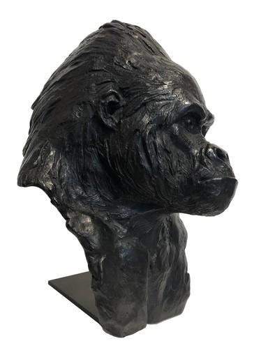 Pierre-Jean CHABERT - Escultura - Tête de Gorille