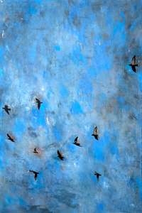Ayline OLUKMAN - Pintura - Evo