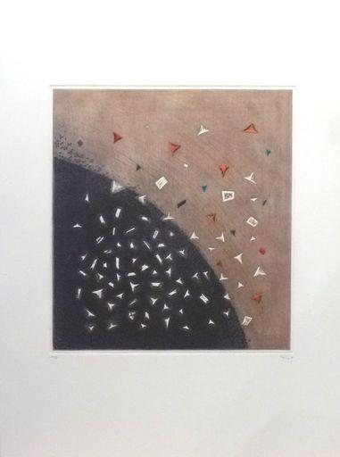 Arthur Luiz PIZA - Estampe-Multiple - Eclatement Tellurien