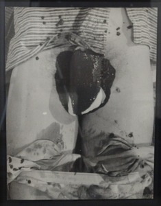 Hermann NITSCH - Photo - Senza titolo