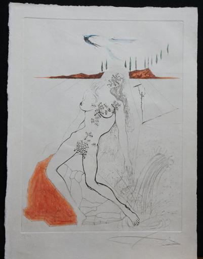Salvador DALI - Grabado - Poems Secrets Nude at The Fountain