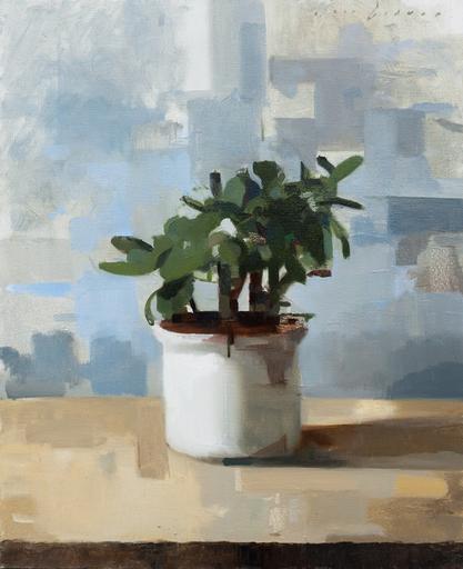 Jon DORAN - Gemälde - A pot plant
