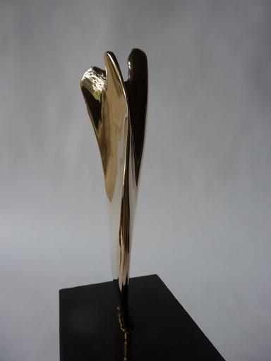Alain GESTIN - Sculpture-Volume - L'envolée