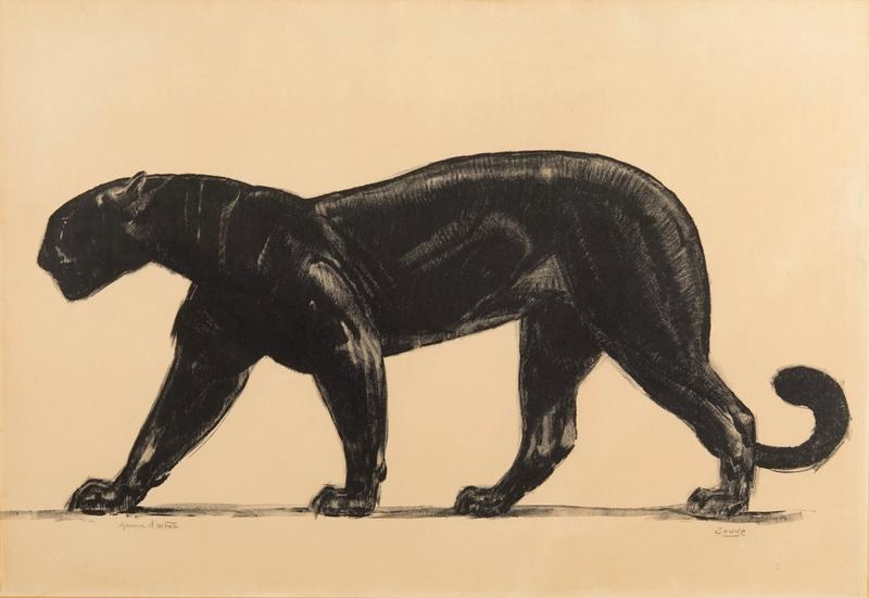 Paul JOUVE - Estampe-Multiple - Panthère noire