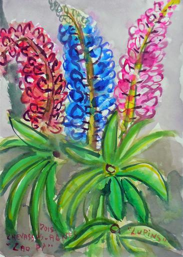 Jean-Pierre CHEVASSUS-AGNES - Drawing-Watercolor - fleurs de LUPIN
