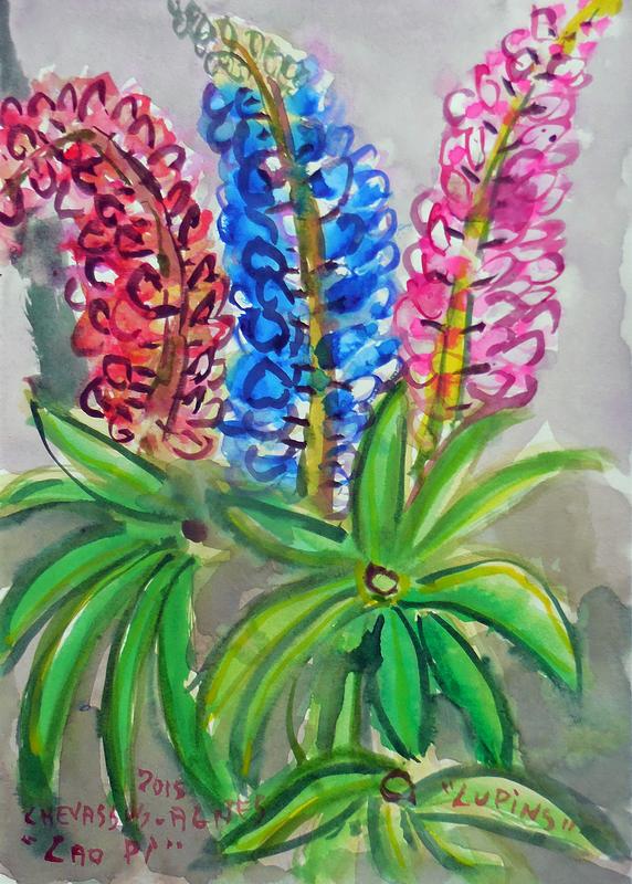 Jean-Pierre CHEVASSUS-AGNES - Dessin-Aquarelle - fleurs de LUPIN