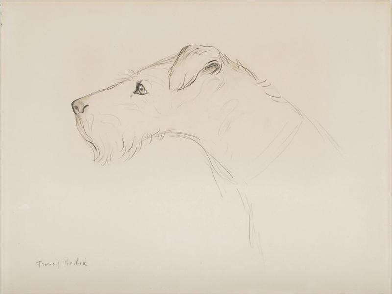 Francis PICABIA - Drawing-Watercolor - Sans titre