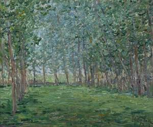 弗朗西斯·毕卡比亚 - 绘画 - Untitled ou Champ près d'un bois