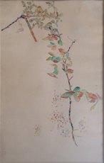 Henri Edmond CROSS - Drawing-Watercolor - Branche fleurie