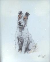 Cecil ALDIN - Miniatura - A FOX