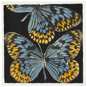 Donald SULTAN - Print-Multiple - Butterflies, Jan. 25, 20,