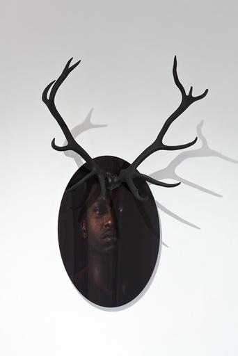 Carlos AIRES - Fotografia - Hunting I