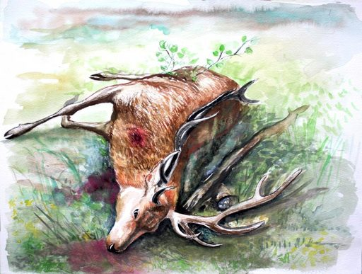 Nathalie BIBOUGOU - Drawing-Watercolor - « Tableau de chasse »