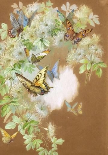 Paul DE LONGPRÉ - Drawing-Watercolor - Schmetterlinge an Ranke, butterflies , exellent