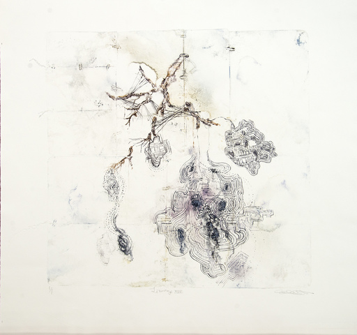 Susan COLLETT - Estampe-Multiple - Lineage XIV