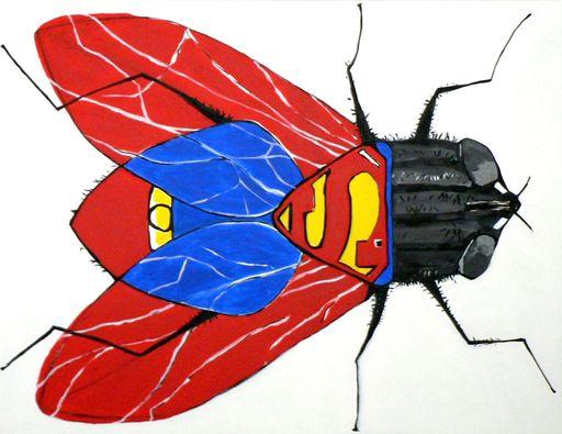 Richard BOIGEOL - Gemälde - La Mouche à Superman