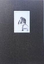 让·法布尔 - 版画 - Sex