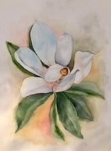 Elena SAETS - Dessin-Aquarelle - Magnolia