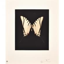 Damien HIRST (1965) - Spirit