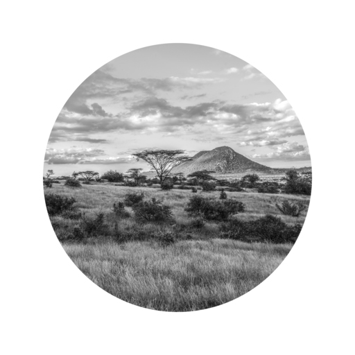 Mario MARINO - Photography - Samburu County