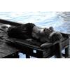 REIVAX - Fotografie - Le ponton