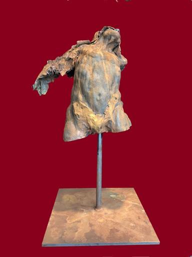 Pascal BORGHI - Sculpture-Volume - L'aile arrachée