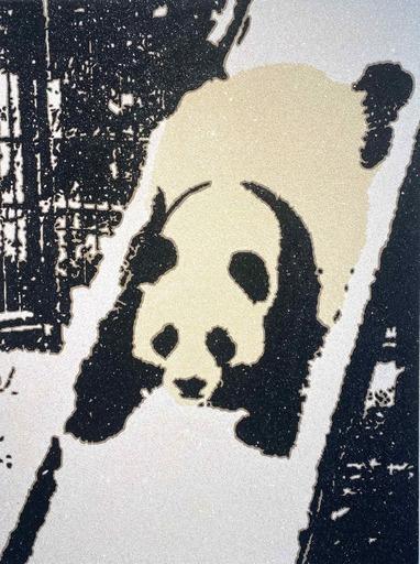 羅伯·普魯特 - 绘画 - Panda Slide
