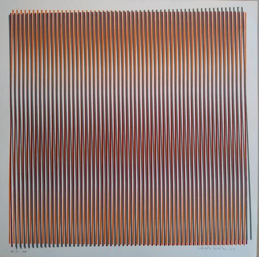 Carlos CRUZ-DIEZ - Druckgrafik-Multiple - Color aditivo