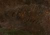"Franz SCHEYERER - Painting - ""Italian Landscape"", Oil on Canvas"
