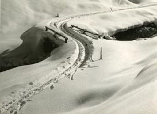 Andreas PEDRETT - Photo - Weglein mit Schnee bedeckt