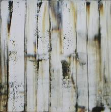 Paul Alexander VAN RIJ (1957) - Driftwood 13