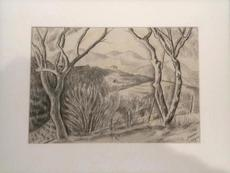 Marie Vorobieff MAREVNA - Drawing-Watercolor - Landscape in the South-east of France