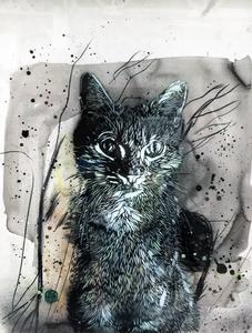 C215 - Gemälde - Chat