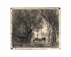 Charles François DAUBIGNY - Print-Multiple - Vaches sous bois
