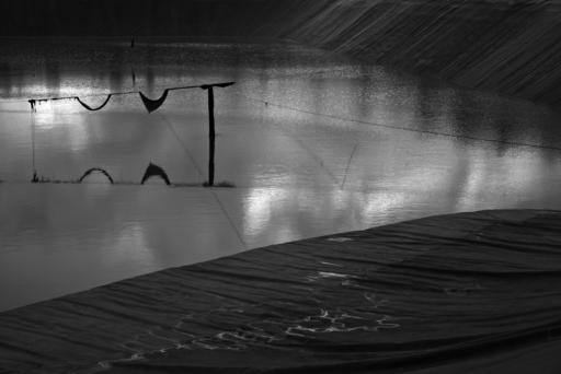 Paul BULTEEL - Photography - Winterreise N° 3    (Cat N° 6226)