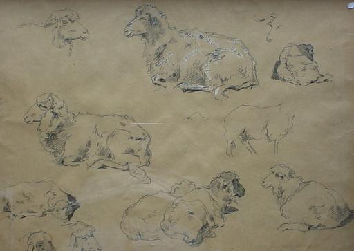 Aladar EDVI-ILLÉS - Dibujo Acuarela - Study of Sheep