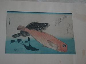 Ando HIROSHIGE, The Grand Series of Fish