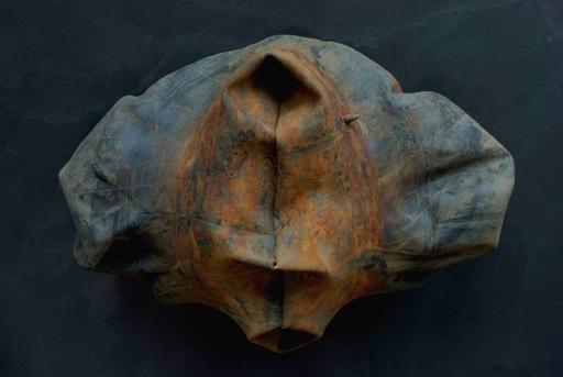Matteo EMERY - Escultura - Involucro