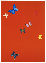 Damien HIRST - Estampe-Multiple - Your Feel