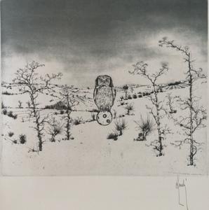 Bernard LOUEDIN - Grabado - Le Hibou