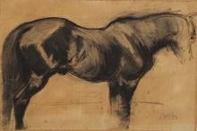 "Ferdinand MAY - 水彩作品 - ""Study of a Horse"" by Ferdinand May, 1903"