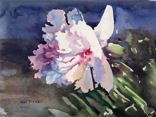 "Galina VINDALOVSKAIA - Zeichnung Aquarell - ""White Tender Peony"" original watercolor painting"