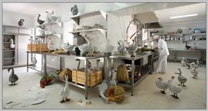 Jean-François FOURTOU - Photography - Sans titre (les petite oies dans la cuisine)